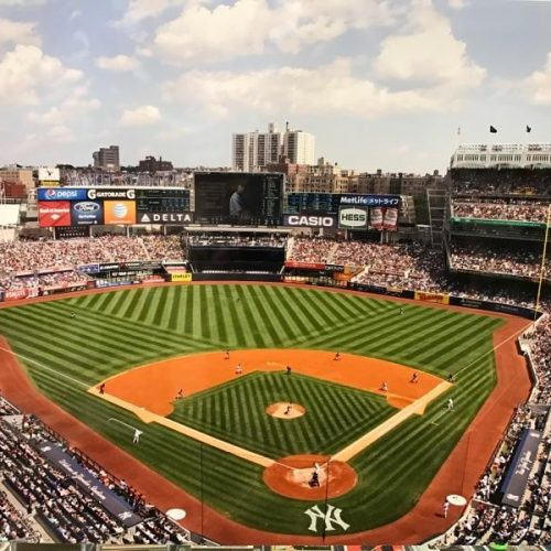 NY Yankees ballpark print